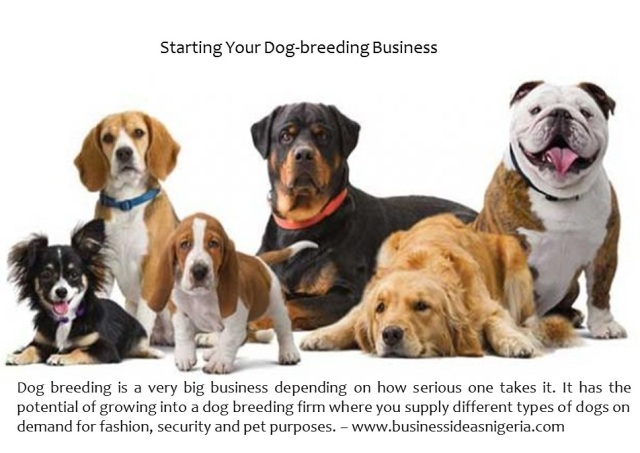 dogbreeding